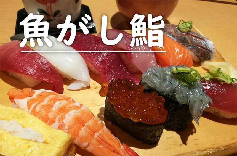 静岡といえば!?【沼津魚がし鮨】で新鮮なお寿司を堪能!