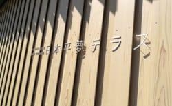 静岡の絶景スポット【日本平夢テラス】で夜景を楽しむ